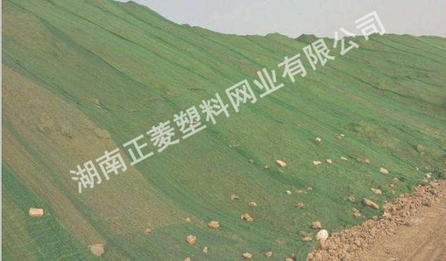 湖南省株洲县楼盘工地盖土网案例